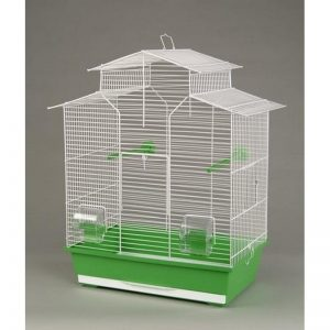 gabbia pappagallini
