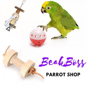 beakboss parrot shop